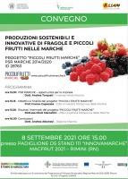 Produzioni Sostenibili e Innovative di Fragole e Piccoli Frutti nelle Marche